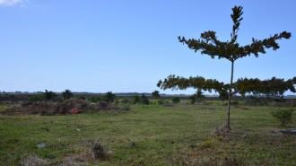 Terrain Résidentiel Beau Vallon