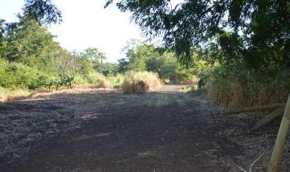 Bien à vendre - Terrain agricole - riviere-noire