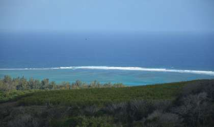 Property for Sale - Agricultural Land - riambel