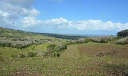 Bien à vendre - Terrain agricole - riambel