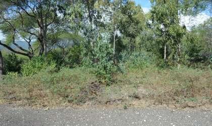 Bien à vendre - Terrain résidentiel - riviere-noire