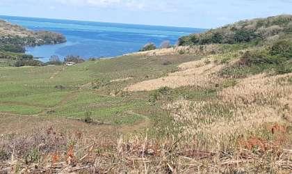 Bien à vendre - Terrain agricole - mahebourg